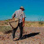Sequías en el territorio nacional