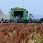 Atención a Siniestros Agropecuarios al rescate del productor