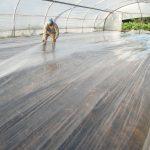 La solarización del suelo