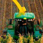 Aumenta tarifa de trigo y maíz