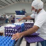 TPP permitirá acceder a nuevos mercados agroalimentarios