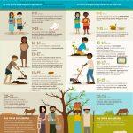 FAO contra el trabajo infantil en la agricultura