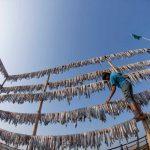 Tratado internacional detendrá la pesca ilegal
