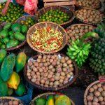 Unen esfuerzos por la seguridad alimentaria