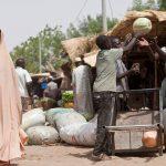La urbanización, catalizador de desarrollo rural